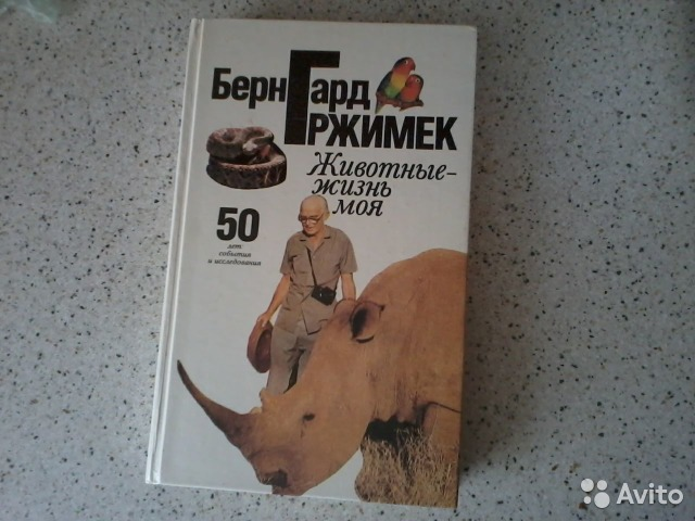 Картинки бесплатно о природе и животных