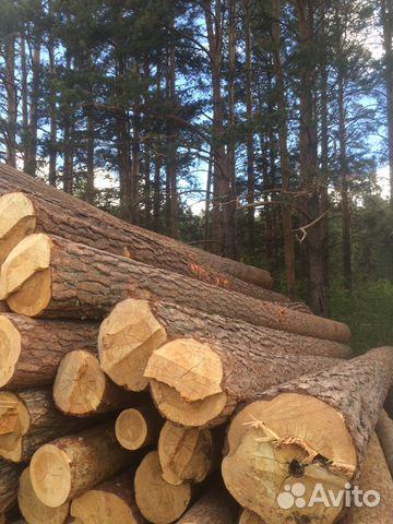 Куплю лес кругляк по челябинской области подать объявление бесплатное объявление в интернете сотовый телефон nokia 7380