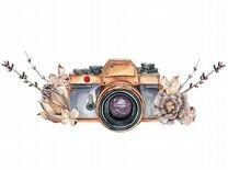 Ассистент фотографа
