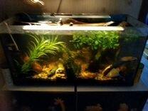 Аквариумc рыбками,200лит